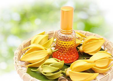 Как использовать масло иланг-иланга для волос: активируем рост, придаем объем, насыщаем сексуальным ароматом