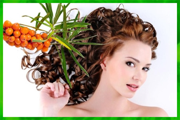 Облепиховое масло для волос: фото