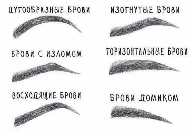 Правильная форма бровей. Как выбрать?