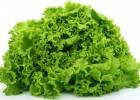 Освежающая маска из листьев салата