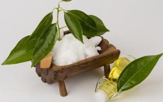 Полезные свойства камфорного масла в уходе за ресницами: как применять