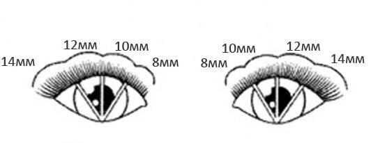 Схема наращивания ресниц с лисьим эффектом