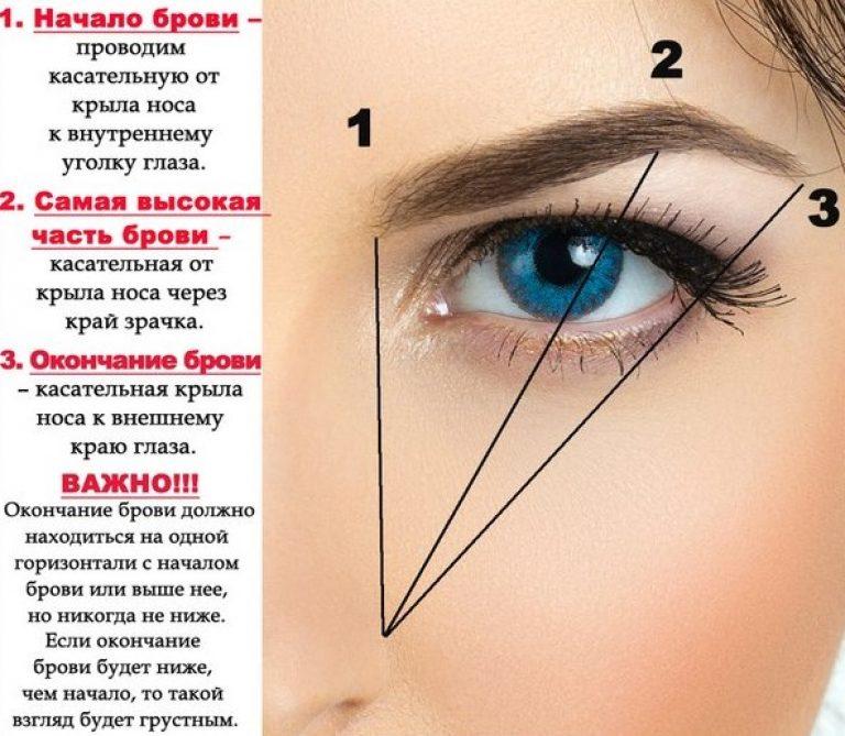 Схема определения формы бровей