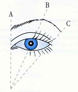 Схема определения точек на брови