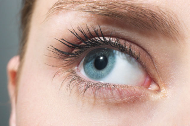 Ресницы необходимы для защиты органа зрения